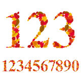 Numbers made with leaves, vector numerals set Royalty Free Stock Photo