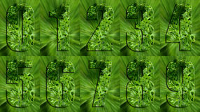 Numbers Made of Parsley Royalty Free Stock Photos