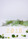 Numbers made of wood with green leaves vertical. Numbers made of wood with green leaves. 2018 is coming soon,happy new year Royalty Free Stock Photography