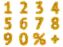 Numbers and math symbols Stock Images