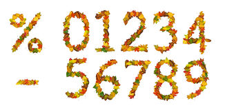 Numbers, percent sign and minus of autumn leaf. Numbers, percent sign and minus made of autumn leaves. Isolated on white Royalty Free Stock Photography