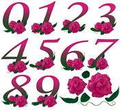Numbers pink floral  illustration Stock Photo