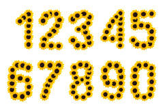 Numbers of sun flowers. Royalty Free Stock Images