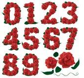 Numera le rose sveglie illustrazione Immagini Stock Libere da Diritti