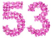 Numeral árabe 53, cinquenta e três, das flores da viola, isoladas Imagem de Stock