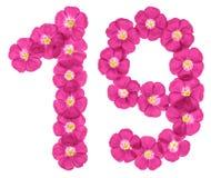 Numeral árabe 19, dezenove, das flores cor-de-rosa do linho, isoladas no fundo branco imagem de stock