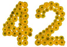 Numeral árabe 42, quarenta e dois, das flores amarelas do botão de ouro, Fotos de Stock Royalty Free