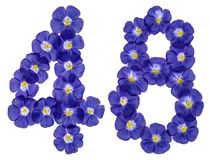 Numeral árabe 48, quarenta e oito, das flores azuis do linho, isola Fotografia de Stock