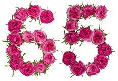 Numeral árabe 65, sessenta e cinco, das flores vermelhas da rosa, isolado Imagens de Stock
