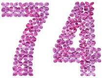 Numeral árabe 74, setenta quatro, das flores do lilás, isoladas Imagens de Stock Royalty Free
