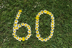 Numeral 60 of blossoms in a meadow Royalty Free Stock Photography