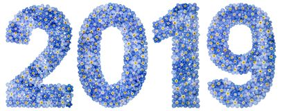 Numeral 2019 from blue forget-me-not flowers, isolated on white Stock Image