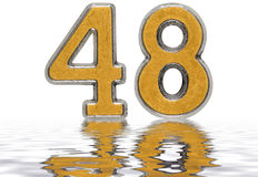 Numeral 48, forty eight, reflected on the water surface, isolate. D on white, 3d render royalty free illustration