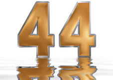 Numeral 44, forty four, reflected on the water surface,. On  white, 3d render Stock Photos