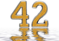 Numeral 42, forty two, reflected on the water surface, isolated. On white, 3d render vector illustration