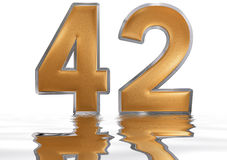 Numeral 42, forty two, reflected on the water surface,. On white, 3d render stock illustration