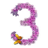 Numeral or number 3. Forms pink daisy color Stock Photography