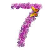 Numeral ou número 7 Fotografia de Stock Royalty Free