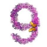 Numeral ou número 9 Imagens de Stock