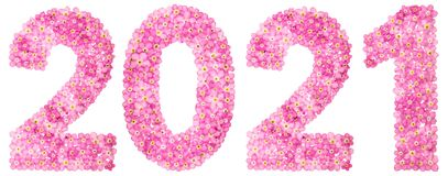 Numeral 2021 from pink forget-me-not flowers, isolated on white. Background Stock Photo