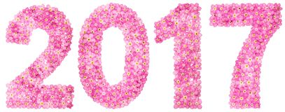 Numeral 2017 from pink forget-me-not flowers, isolated on white. Background Royalty Free Stock Photography