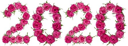 Numeral 2020 from red flowers of rose, isolated on white background royalty free stock photos