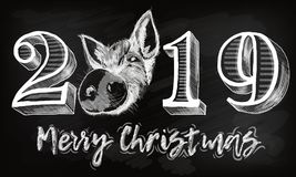 2019 numeral text hand lettering with pig. Dry brush texture effect. Happy New Year. Merry Christmas. Graduation. Design. 2019 numeral text hand lettering. Dry vector illustration