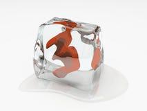 Numeral três no cubo de gelo Fotos de Stock