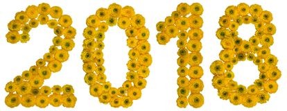 Numeral 2018 from yellow flowers of buttercup, isolated on white. Background Stock Image