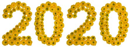 Numeral 2020 from yellow flowers of buttercup, isolated on white. Background Royalty Free Stock Photography