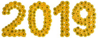 Numeral 2019 from yellow flowers of buttercup, isolated on white. Background Royalty Free Stock Images