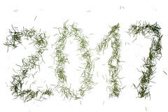 Numerals of the New year from the needles. Numerals of the New year from the pine needles on a white background Stock Photo