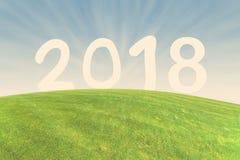 Numere 2018 en el prado verde con el rayo del sol Fotografía de archivo libre de regalías