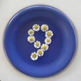 Numere 9, flores blancas en fondo azul Imagenes de archivo