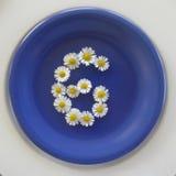 Numere 6, flores blancas en fondo azul Imagen de archivo