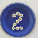Numere 2, flores brancas no fundo azul fotos de stock royalty free