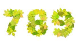 Numeri con fogli verdi Immagine Stock Libera da Diritti