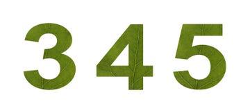 Numeri dalle foglie verdi su un fondo isolato bianco Macro fucilazione Concetto: ecologia fotografia stock libera da diritti