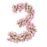 Numeri 3 dei fiori royalty illustrazione gratis
