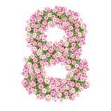 Numeri 8 dei fiori illustrazione di stock