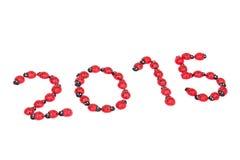Numeri della coccinella per 2015 Immagini Stock
