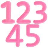 Numeri dentellare simili a pelliccia Immagini Stock Libere da Diritti