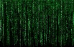 Numeri di codice digitali verdi Immagini Stock