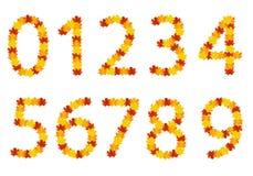 Numeri di fogli di autunno Immagini Stock