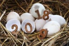 Numeri di legno 2018 e 2019 sul guscio d'uovo Immagine Stock