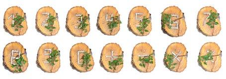 Numeri di legno rustici Fotografie Stock