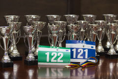 Numeri e medaglia della corsa dei premi Immagine Stock Libera da Diritti