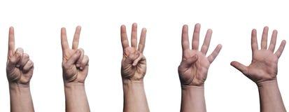 Numeri mimici della mano isolati su fondo bianco Immagini Stock Libere da Diritti
