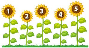 Numeri uno - cinque sui girasoli illustrazione vettoriale