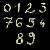 Numeric figures of raw civet coffee beans Stock Images